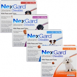 NexGard Chewables for Dogs 60.1-121 lbs