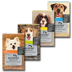 Sentinel Spectrum for Dogs 25.1-50 Lbs